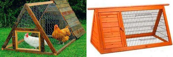 Bagaimana hendak membuat rumah ayam di negara ini dengan ...