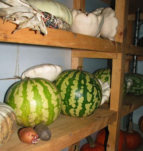 В помещении хранения арбузов необходима хорошая вентиляция