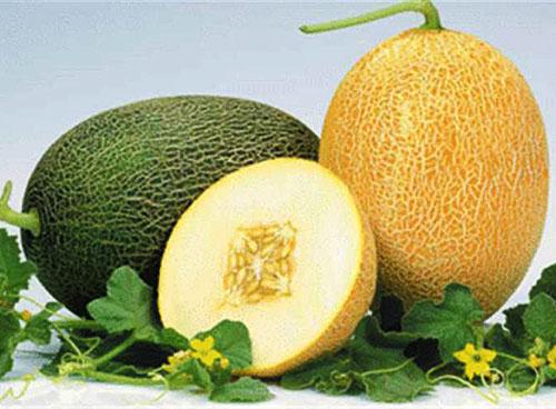 suplimentul de pepene galben pentru pierderea în greutate)